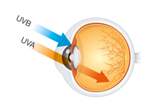 uva-uvb-sun-rays-entering-eye-winter-eye-health-spamedica